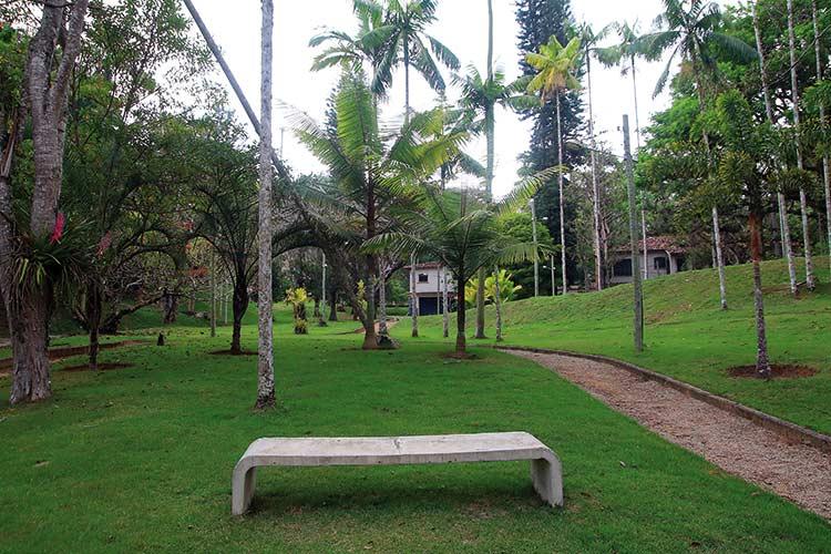 jardim-botanico-by-fernando-priamo10